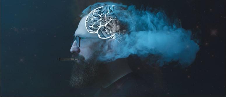 Does cannabis kill brain cells? Cannabis myths debunked
