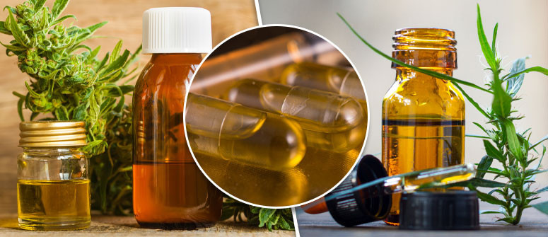The 3 most popular CBD extraction methods
