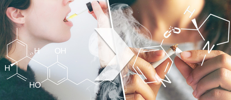 Cannabidiol & Nicotine Addiction: Can CBD Help You Quit Smoking Tobacco?