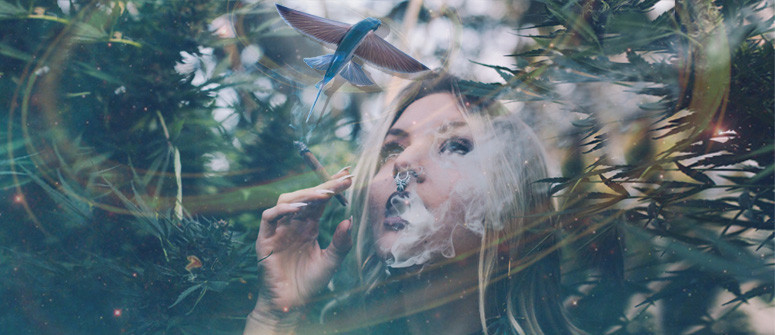 Does cannabis cause hallucinations?