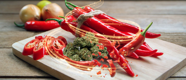 Combining hot chili peppers and cannabis might help an upset stomach