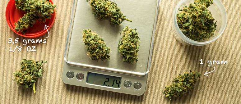 Confusing cannabis amounts: grams, quarters, dimes and ounces