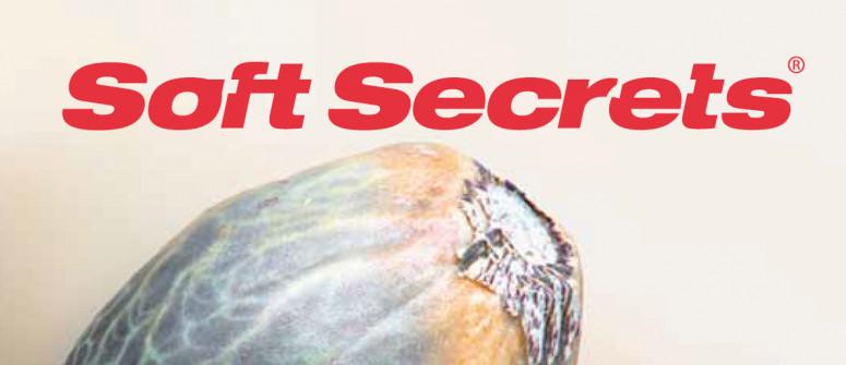 Website review: Soft Secrets