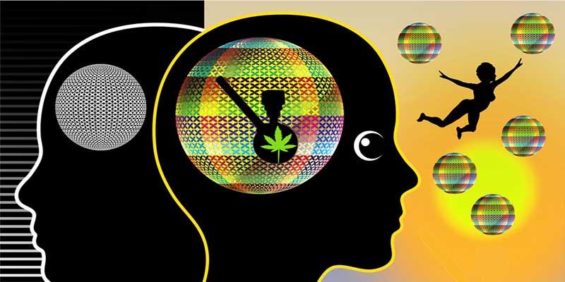 Marihuana als ein natürliches gehirnstimulans
